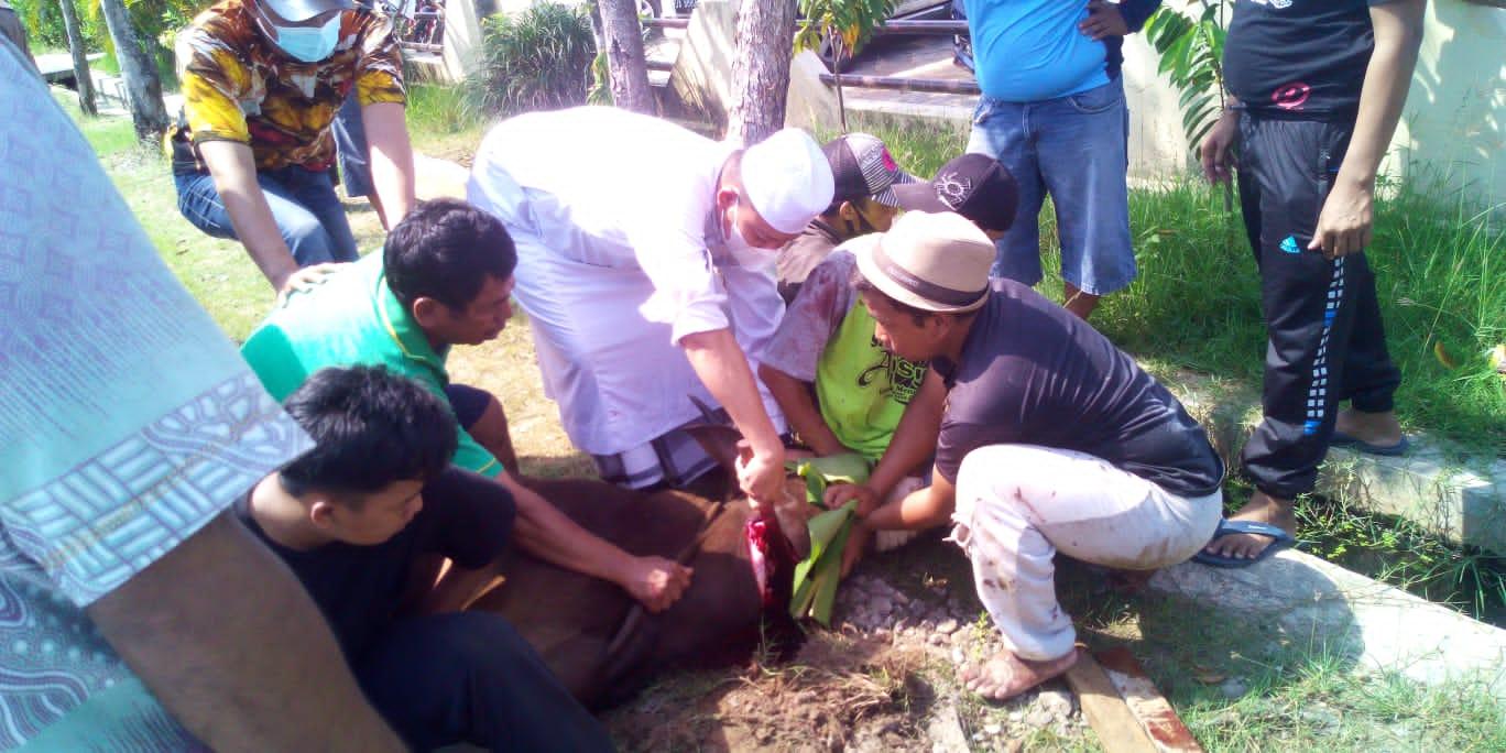Polsek Banjarmasin Utara Potong Empat Ekor Sapi Kurban, Kompol Indra: Satu Ekor Khusus Wartawan dan Anak Yatim