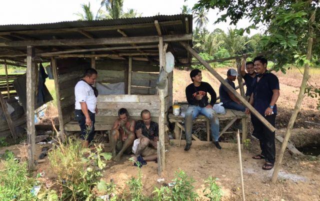 Edarkan Sabu di Tengah Sawah, Empat Pengedar  Diringkus Polisi